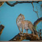 Leopard Sky